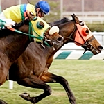 Come Dancing Goes Gate-To-Wire In Distaff Handicap
