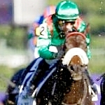 Grade 1 Double Nets Mike Smith Jockey Of The Week Title