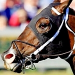 Barr Introduces Three Proposals To Reform Tax Code, Would Benefit Horse Industry