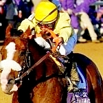 1989 Gotham Stakes Launching Pad For Easy Goer's Memorable 3-Year-Old Season