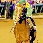 Gray Attempt Back On Arkansas Derby Trail With Sprint Victory