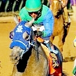 Good Samaritan Rolls Clear In New Orleans Handicap; The Player Pulled Up In The Stretch