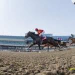 Ehalt: Does Future Of New York Racing Include Both Belmont And Aqueduct?
