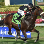 Royal Delta's Half-Brother Keeps To The Turf In 2017 Debut
