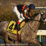 Florida Derby Start Thrown 'Into The Mix' For Promising El Areeb