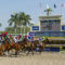 Rainbow 6 Carryover Builds To $134,000 For Gulfstream's Monday Card