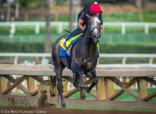 Arrogate Just Galloping Along In First Work Since