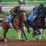 Gormley 'Does Things So Easy,' Possible For San Felipe