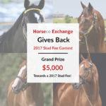 Horseco Inc. Announces $5,000 'Exchange Gives Back' Program
