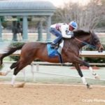 Pace Scenario Could Make Southwest 'Tougher' For Favorite Uncontested