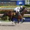 One Liner 'Stepping Up To A Big Race' In Monday's Southwest Stakes