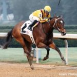 Terra Promessa, Undefeated At Oaklawn, Headlines Bayakoa