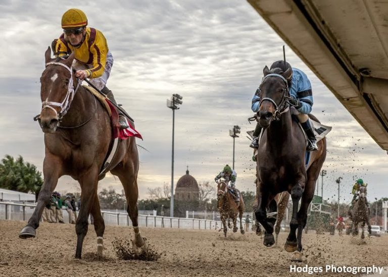 Valadorna Not Coming Half Loaded To Rachel Alexandra