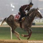 All In The Family: Half-Brothers Lani, Awardee 'Totally Different' For Dubai World Cup