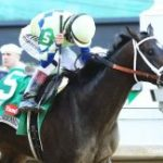 Breeders' Cup Presents Connections: 'Old Hard-Back,' Five-Time Kentucky Derby Winner