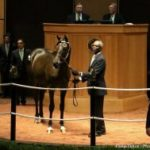 High Buyback Rate Punctuates Inaugural Edition of Fasig-Tipton Turf Showcase Sale