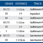 Weekend Lineup: Pegasus World Cup
