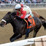 Bloodlines: New North American Stallions For 2018, Part Two