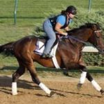 Breeders' Cup Presents Connections: 'Playing' Around At Bradley's Indian Ridge Farm