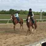 Twin Thoroughbreds Mr. Ping And Mr. Pong To Race Each Other Friday