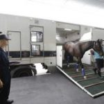 China's Conghua Training Facility Nears Completion; First Horses Arrive