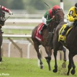 Day Phillips Calm And Collected Ahead Of First Woodbine Mile Bid With Mr. Havercamp