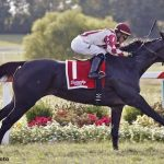 Channel Cat Wins Dueling Grounds Derby; Osare Takes Oaks As Kentucky Downs Handle Soars