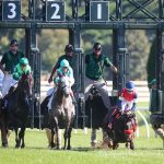 A Raving Beauty Leads Gate-To-Wire In First Lady