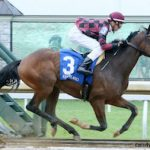 'Dream Come True': Declan Carroll Celebrates First Career Victory At Keeneland