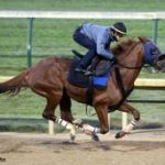 Mind Your Biscuits 'Perfect,' Thunder Snow 'Fresh' Ahead Of Breeders' Cup Engagements