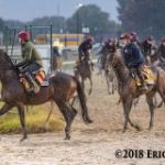 Breeders' Cup Euro Report: O'Brien Caravan Hits The Track At Churchill Downs