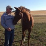 Thoroughbreds, Veterans Find A Home 'Down The Stretch'