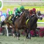 Raging Bull Topples Very Game River Boyne In Hollywood Derby