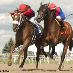After Pegasus Disappointment, Channel Maker Seeking Redemption In G2 Mac Diarmida