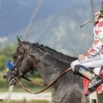 Roadster Runs Down Stablemate Game Winner In The Santa Anita Derby