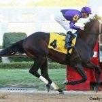 Crow Hopes Warrior's Charge Will Bring Her Full Circle In Preakness