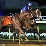 Mr. Money Negotiates Loose Horse En Route To Indiana Derby Victory