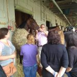 Pair Of Saratoga Initiatives Getting The Public Closer To Racehorses