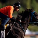 Vino Rosso Pulls Clear Late In Injury-Marred Breeders' Cup Classic; Mongolian Groom Euthanized