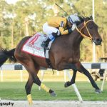 King Guillermo Springs 49-1 Upset In Tampa Bay Derby