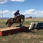 Thoroughbred Makeover Diaries Presented By Excel Equine: Horses Don't Read The Script