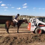 Thoroughbred Makeover Diaries Presented By Excel Equine: Mind Over Matter