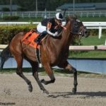 Lady's Island, Jakarta Score Stakes Victories At Gulfstream