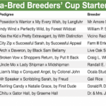 Florida-Bred Leaderboard Presented By FTBOA: Sunshine State Stood Out At Breeders' Cup