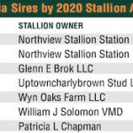 Pennsylvania Leaderboard Presented By Pennsylvania Horse Breeders Association: Jump Start Tops 2020 Stallion Award Earners