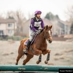 Thoroughbred Makeover Diaries Presented By Excel Equine: Riding Lessons About Nothing