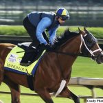 Essential Quality Among Derby Candidates Breezing At Churchill Downs; Concert Tour Taking Bypass To Preakness