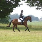 The Blueberry Bulletin Presented By Equine Equipment: My OTTB Did Not Fail