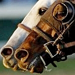 $145,375 Two-Day Pick 6 Carryover Saturday At Santa Anita; Rain In Forecast
