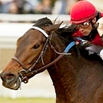 Seven Trumpets Fends Off Challengers For Good Lord Stakes Win
